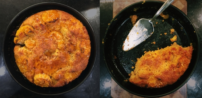 Clementine Pudding